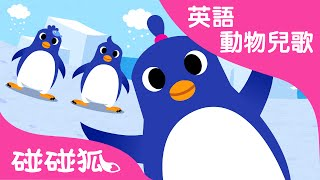 The Penguin Dance | 英語動物兒歌 | 碰碰狐!兒童兒歌