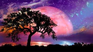 10 часов музыки для глубокого сна, снятия стресса, бессонница (Star Sky)