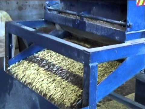 Установ для производства пилет из соломы