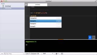 In Action - Run a short PHP script in the console