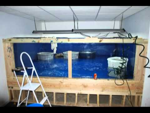 4000 gallon aquarium build amazing tour of the tank for How to reseal a fish tank
