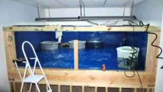 1500 Gallon Aquarium/fish Tank Build. 8 Weeks In Under 3 Mins. New Version