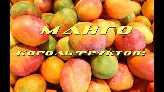 Во саду ли, в огороде. Король фруктов-манго!