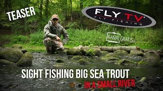 FLY TV - Sight Fishing Big Sea Trout in a Small River - Teaser