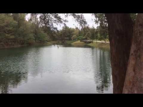 台東人的秘密花園--琵琶湖