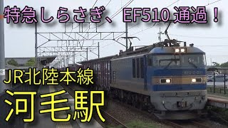 【JR北陸本線】223系 681系特急しらさぎ EF510 河毛駅発着&通過集