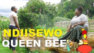 Ndiisewo Queen Bee | BUSTOP TV
