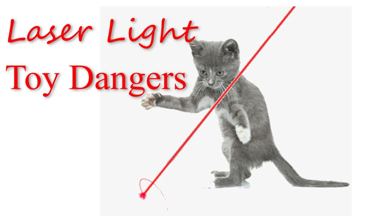 Superb Laser Light Toy Dangers   YouTube