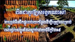 អាហ្សង់ទីនជីករណ្ដៅផ្នូរផ្នូរសម្រាប់ពលរដ្ឋខ្លួនដែលស្លាប់ដោយសារCovid-១៩|Khmer News Sharing