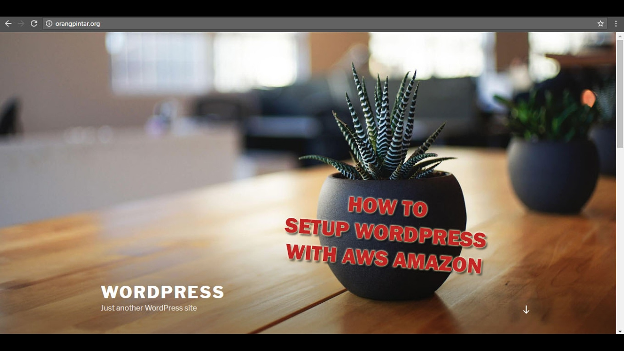 Install Wordpress on Amazon EC2 - With ur Own Domain