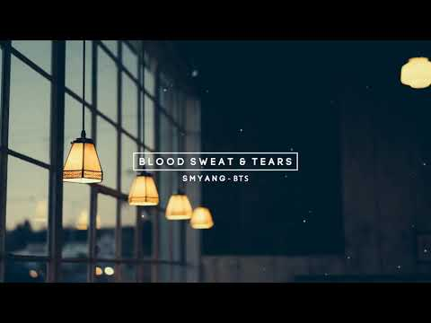 BTS - Blood Sweat And Tears - Piano Ballad Ver❣