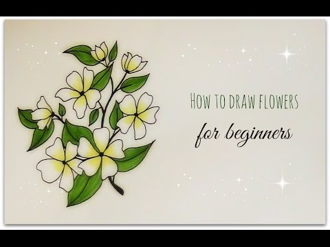 How to draw flowers jasmine flower for beginners youtube ccuart Image collections