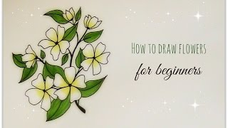 how to draw flowers - jasmine flower for beginners