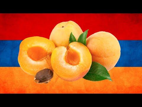Абрикос-символ Армении