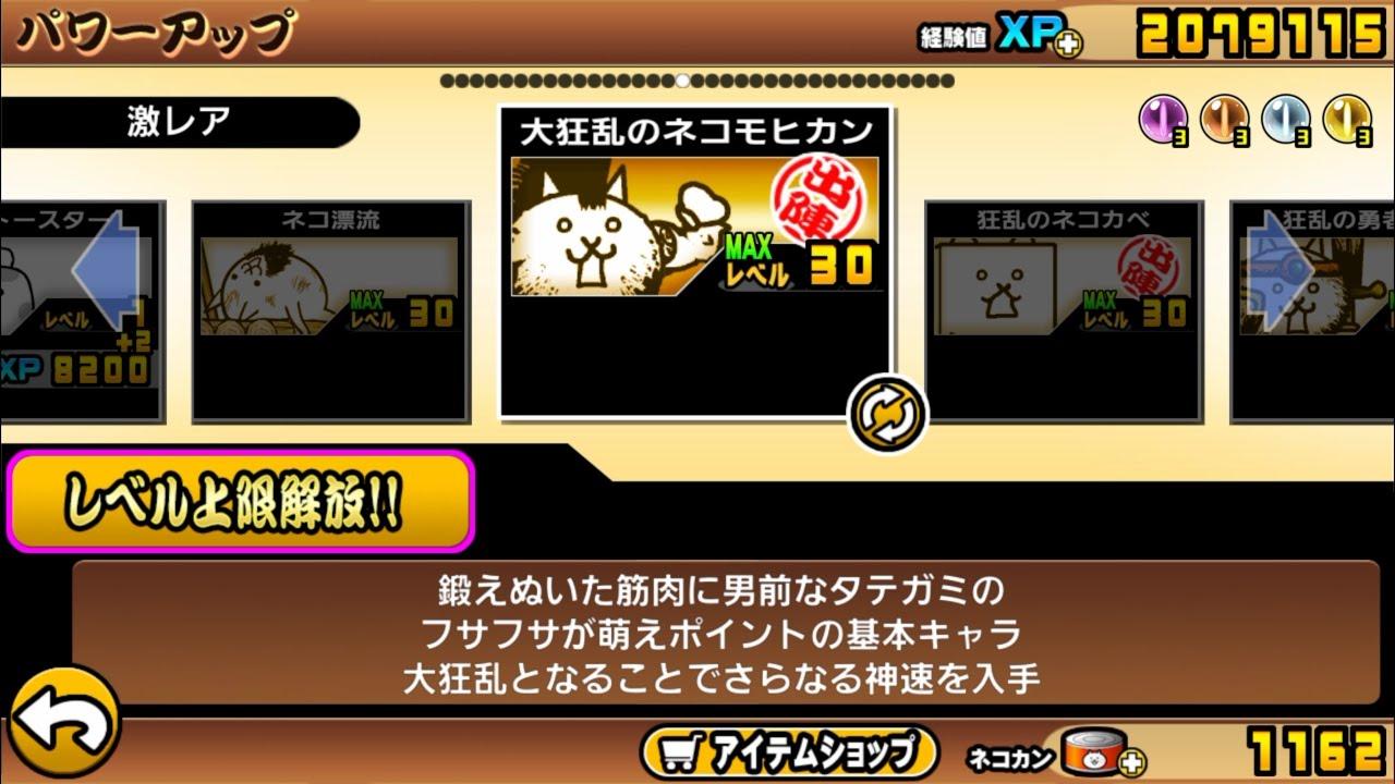 Catway Battle Cats