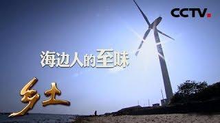 《乡土》 20190509 海边人的至味| CCTV农业