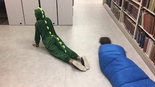 Item 60- Iguana vs Snakes (Snitchcock Scav 2017)