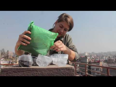 Life in Nepal /// Week One