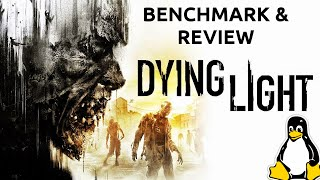 Dying Light Linux Benchmark and Review (Ubuntu vs Windows)