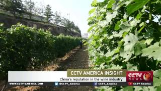 Marc Curtis on China's thriving wine market