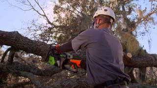 Greenworks 80V Pro Chainsaw with Matthew Neal