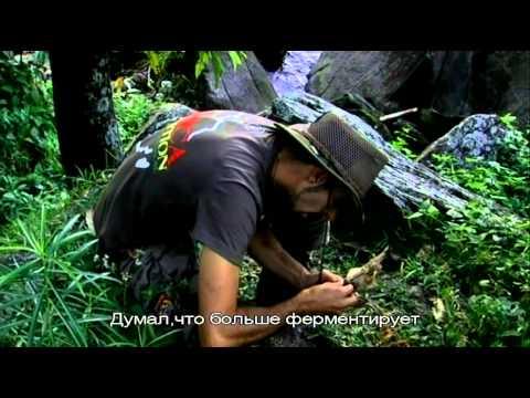 Strain Hunters Malawi Russian Subtitles