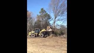 Cat Loader vs Oak Tree