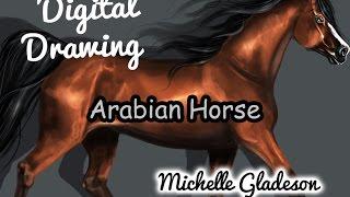 Digital Drawing - Arabian Horse