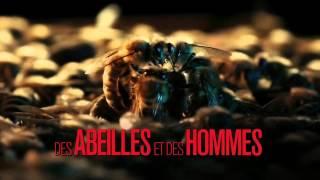 Des abeilles et des hommes de Markus Imhoof bande annonce