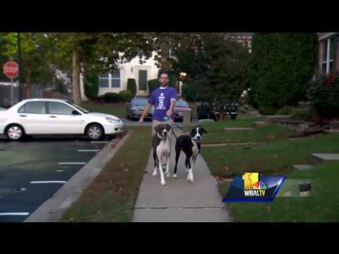 Animal rights advocate upset over treatment of dog