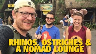 Rhinos, Ostriches and a Nomad Lounge | Animal Kingdom
