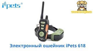 Электрический ошейник iPets 618 купить в Украине