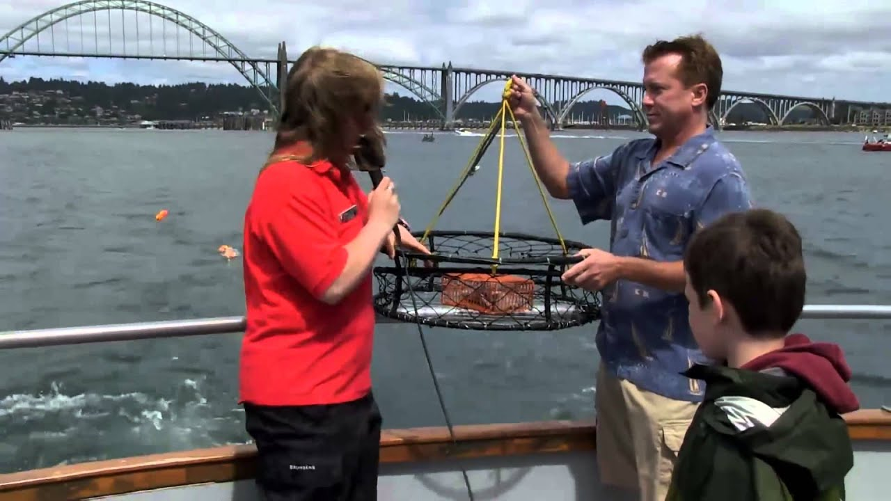 Marine Discovery Tours Newport Or