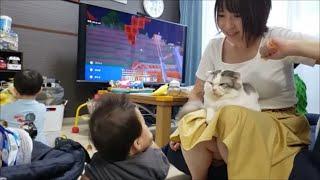 つねられてもママの太ももからどかない温厚猫&自由に遊ぶ子供たち
