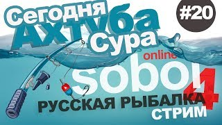 Російська рибалка 4 - Ловимо рибу на Сурі й Ахтубі. Стрім #20