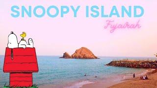 Snorkeling in Snoopy Island. Fujairah. UAE