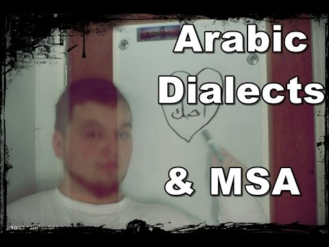 Arabic Dialects or MSA?