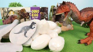 恐竜のタマゴを発掘して恐竜フィギュアを取り出そう!ティラノサウルス、アンキロサウルスなど12種類