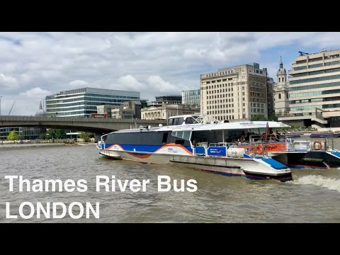 🌎 River Bus Journey On The Thames In London