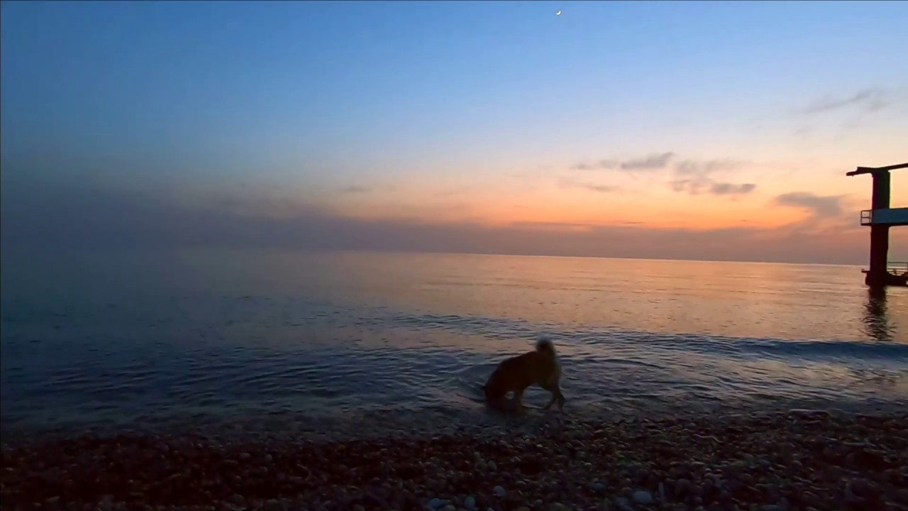 Лазаревское 27 Марта Вечер на море Встретил Бaрбоса и ...