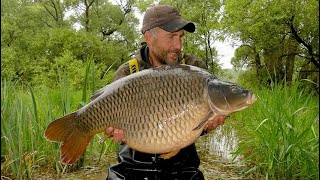 Carp fishing blog May 2019 - Lac d'Orient adventure