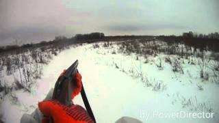Охота с эстонской гончей на зайца русака