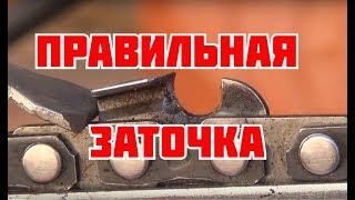 Как заточить цепь бензопилы своими руками (видео)