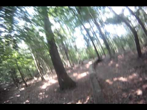 Running the Bicycle Post Trails, Greenville NC - Breaking Benjamin