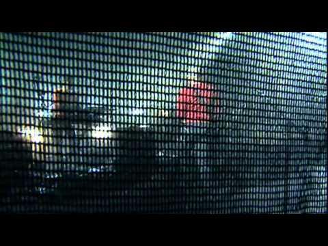 NOIR DESIR Concert février 2003