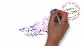 Пони принцесса Селестия  Как поэтапно нарисовать маленькую пони карандашом(как нарисовать селестию, как нарисовать принцессу селестию, как нарисовать пони селестию, как нарисовать..., 2014-07-25T08:30:35.000Z)