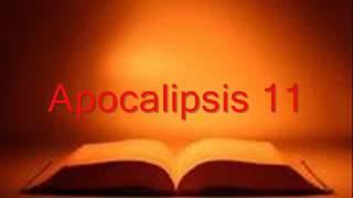 apocalipsis completo  biblia hablada  rv 1960
