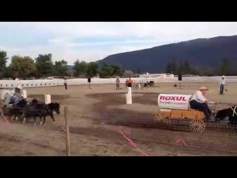 Chuckwagon Race GF 2012