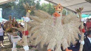 Gmina Dębica kultywuje tradycje dożynkowe