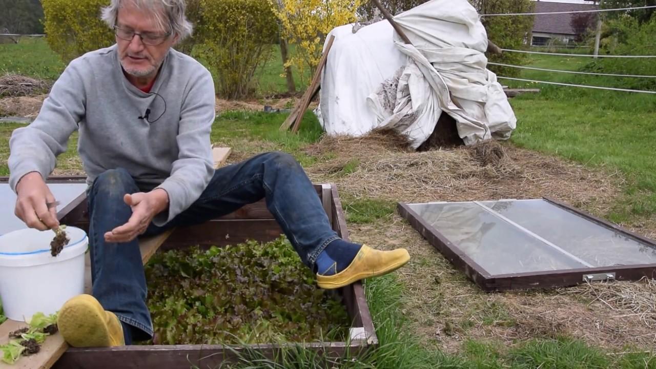 le potager du paresseux le devenir des plants avant le gel youtube. Black Bedroom Furniture Sets. Home Design Ideas